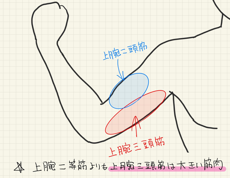 24/7Workout 川崎店 上腕三頭筋